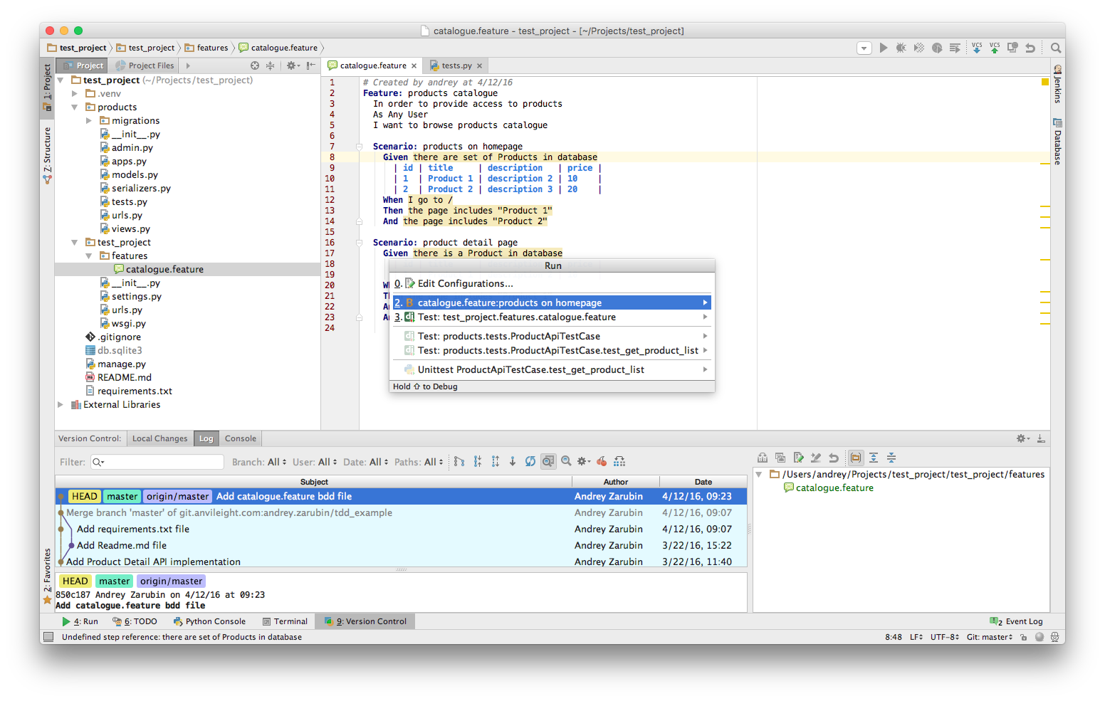 Running behave test with PycHarm